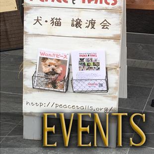Eventsのイメージ