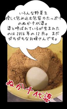 nukachiyo-ba