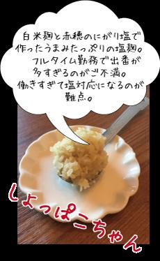 shoppako-chan